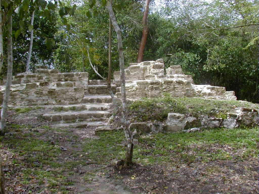El Pilar Belize Maya